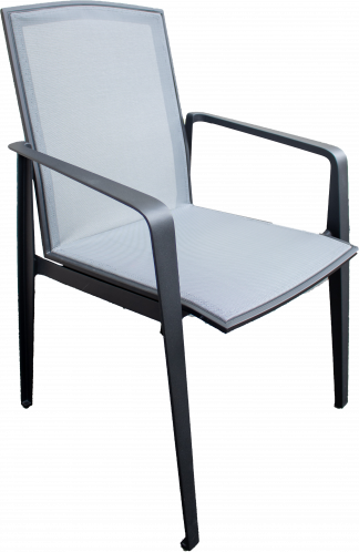 Emerson Dining Arm Chair in Pewter