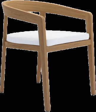 Bayside Dining Arm Chair