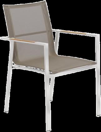 Alzetta Dining Arm Chair