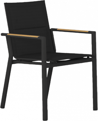 La Paz Dining Arm Chair in Asteroid